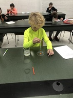 Skittles Weathering and Erosion Lab